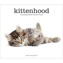 Kittenhood Life-Size Portraits of Kittens in Their First 12 Weeks product image