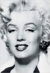 Marilyn Monroe And The Camera product image