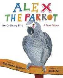 Alex The Parrot product image