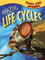 Amazing Life Cycles: Bugs and Spiders product image