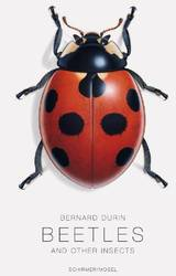 Beetles and Other Insects Bernard Durin product image