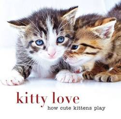 Kitty love : How cute kittens play product image