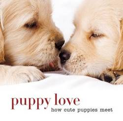 Puppy love : How cute puppies meet product image